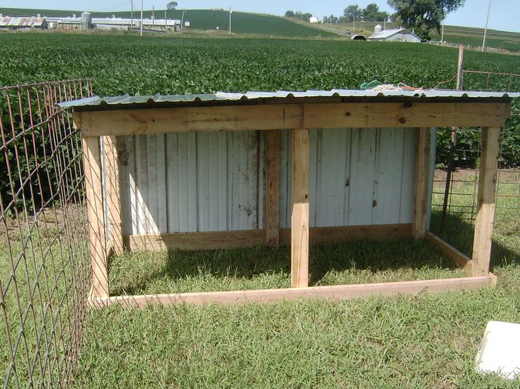 Cheap Goat Shelter | New goat shed and weaning kids | faithfulhomestead