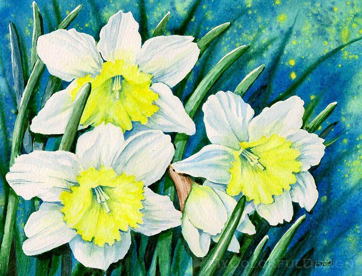 Нарцисс цветок рисунок красками