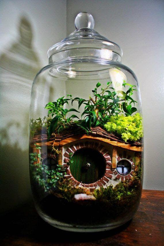 Bitkiler, Gezi, Lisan, Sağlıklı Tarifler: Terrarium - Teraryum / Kavanozda, Fanusta Bitki Yetiştirme / Dekoratif Arazi Ortamları