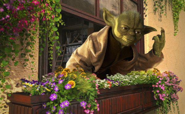 Star Wars on Vacation Art Prints - Yoda