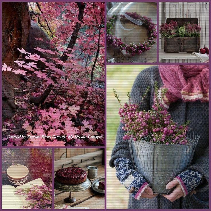 '' Autumn is coming (3) ''... by Reyhan Seran Dursun