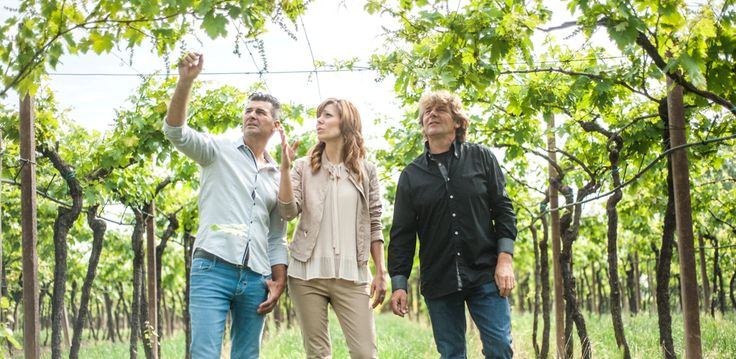 "The third generation, Antonio, Germano and Cornelia, has collected the legacy of their parents and the tradition of a family production, bringing the T.E.S.S.A.R.I wine in all continents, promoting the love for ""tera"" in the world."