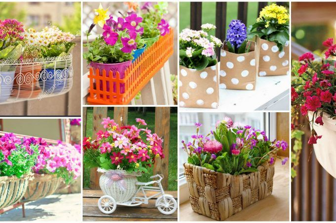 Balcony Flower Boxes That You Will Fall In Love With
