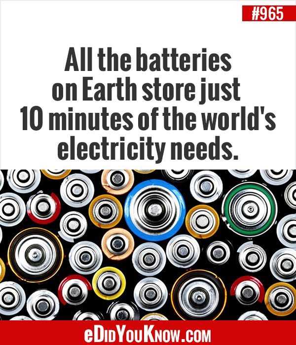 Fun facts earth hour