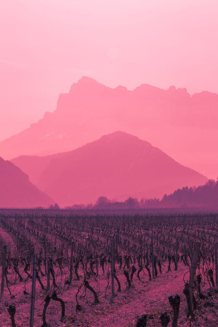 Vin rouge, Chastel-Arnaud, South France, by Clément Skladanek, on 500px.
