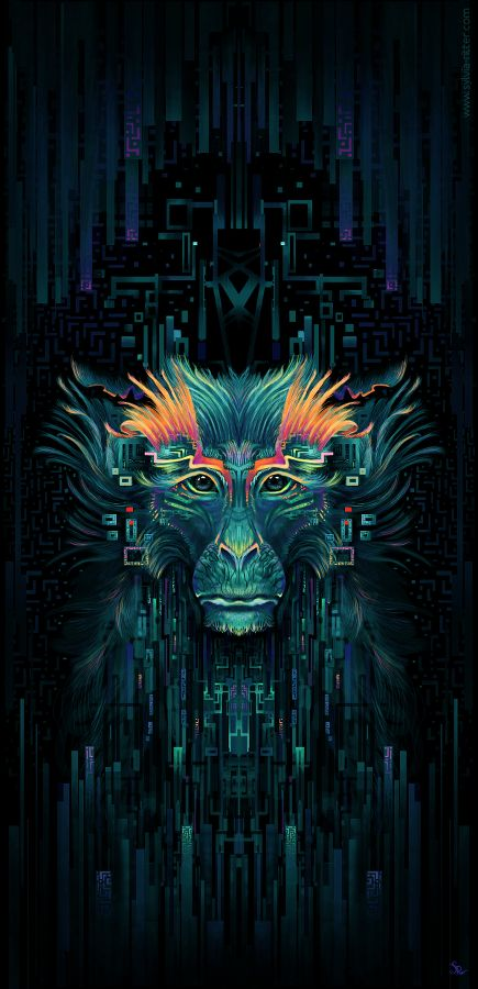 The Shaman Monkey by Sylvia Ritter