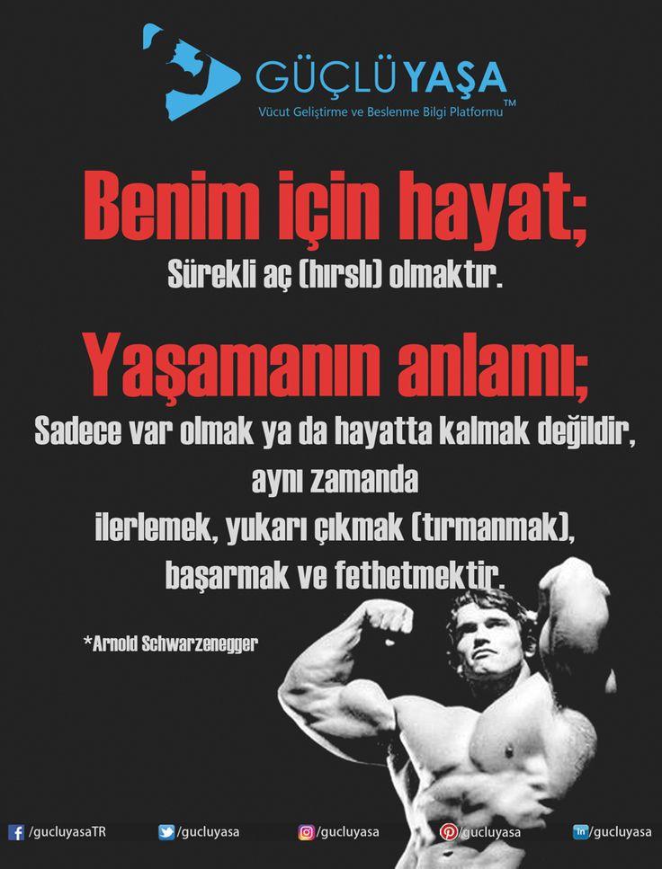 (Başarıya) Aç olmazsanız aç kalırsınız! #vücutgeliştirme #vucutgelistirme #egzersiz #gymmotivation #fitness #fit #kas #gym #motivasyon #spor #antrenman #idman #macfit #muscle #vücut #yoga #kadın #kadınlaraözel #woman #arnold #başarı #cardio #kardiyo #sporsalonu #türkiye #güçlüyaşa