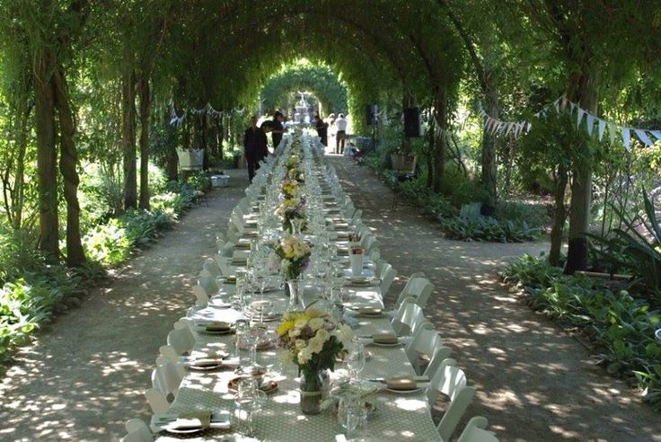 Outdoor Wedding Reception under a Wisteria Archway at Alowyn Gardens. One continuous table using 1.8m x 0.9 Trestle Tables and our white Americana folding chairs.