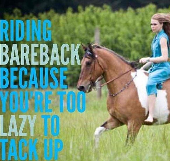 my life explained perfectly. last weekend I was so lazy as soon as I got the horse I was riding, I just tied the lead rope into makeshift reins and I hopped on and rode.