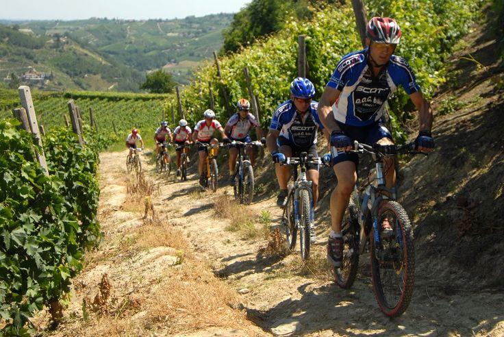 MTB in Langhe Roero vineyards!