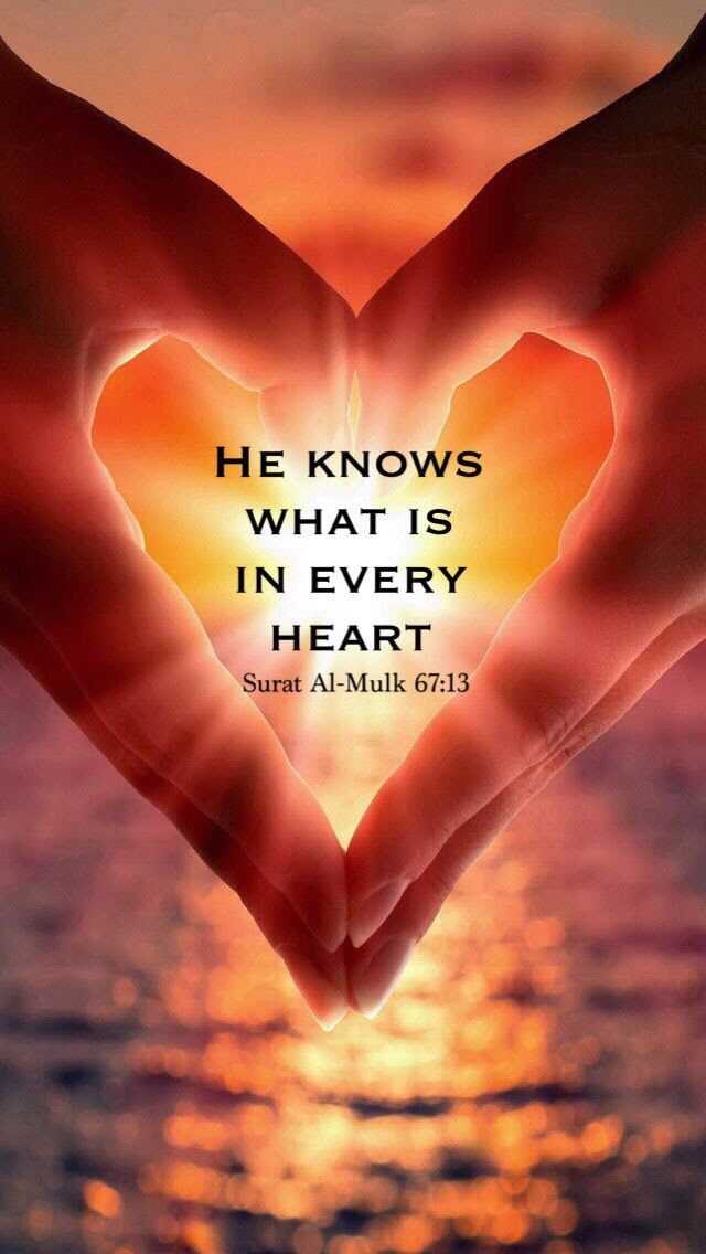 #Quran Surat Al- Mulk | Allah knows what is in every heart