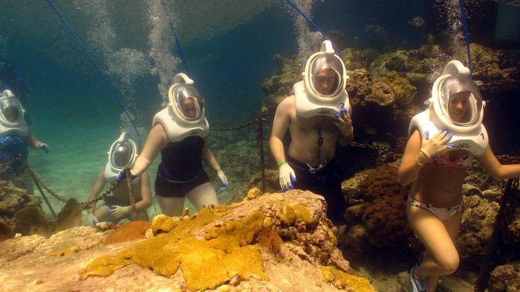 Sea Trek -Coral World, St. Thomas, USVI