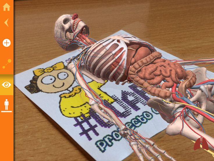El cuerpo humano en Realidad Aumentada con Arloon Anatomy - PROYECTO #GUAPPIS