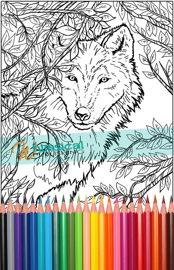 wolf coloring pages nature coloring pages by whimsicalpublishing - Wolf Coloring Pages For Adults