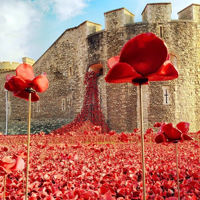 Blood Swept Lands And Seas Of Red, created to mark the centenary of the start of the Great War. It will eventually include 888,246 ceramic poppies to represent all British or colonial military fatalities of the conflict.