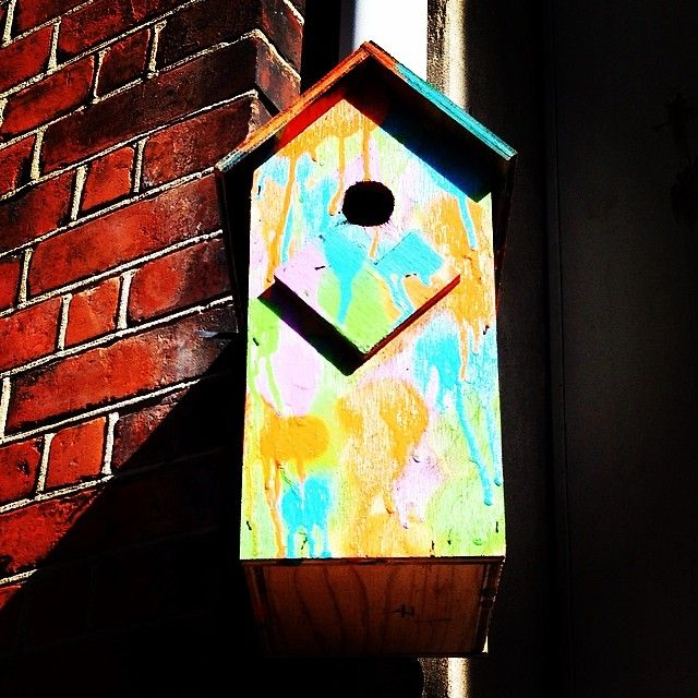You can also enjoy more #birdsong if you like. Do as these unknown city guerrillas, build your own #birdbox and put close to your home. And of course it should be colourful painted. #copenhagen #copenhagenfavorites #cph #kbh #københavn #voreskbh #sharingcph #deldinby #delditkbh #copenhagenize #kigopkbh #nature #citygarden #urbanism #trees #sustainability #socialgood #socent #smartgrowth #reuse #renewable #eco #ecoart #ecofriendly #biodiversity #animals #activism www.toursincopenhagen.com