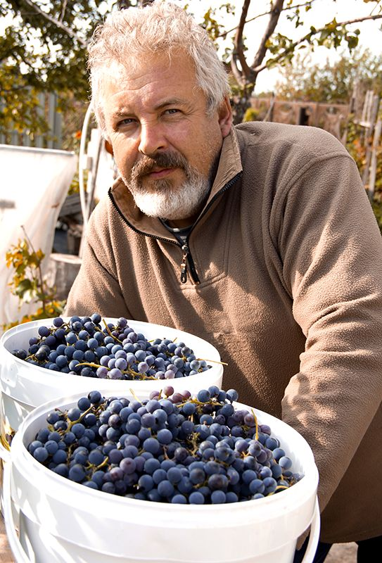 What Does Potassium Sorbate Do For My Wine?   E. C. Kraus Home Winemaking Blog