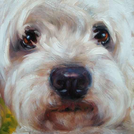 CLOSE UPS custom Pet Portrait oil paintings by door puciPetPortraits