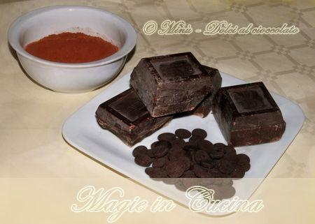 Ricette a base di cioccolato http://www.magieincucina.com/ricette-dolci/dolci-al-cioccolato/