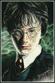 Cast - Harry Potter Fan Art (31568665) - Fanpop