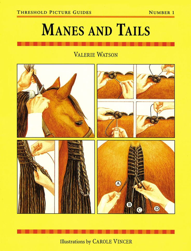 Threshold Picture Guide No. 1 Manes and Tails by Valerie Watson | Quiller Publishing. A useful, informative guide to the art of trimming and plaiting manes and tails. Features: how to pull a mane and tail, plaiting a mane and tail with thread or rubber bands, remedial mane plaiting, hogging a mane, safety and more. #horse #pony #mane #tail #plaiting