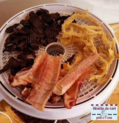 Snack casalinghi essiccati per cani - l'essicatore