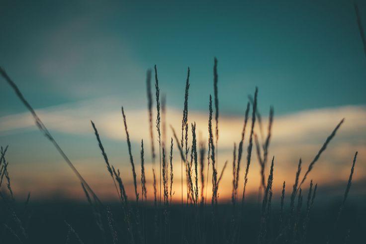 En zelfs als ons hart ons aanklaagt: God is groter dan ons hart, Hij weet alles 1 Johannes 3:20  Het kan lastig zijn als je verder moet in een situatie die je niet hebt gewild. Hoe kun je moed houden, als je elke dag geconfronteerd wordt met de gevolgen van je verleden? Als je je weg…