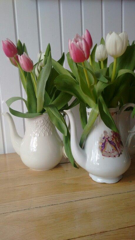 Tulips in my teapots ;-)