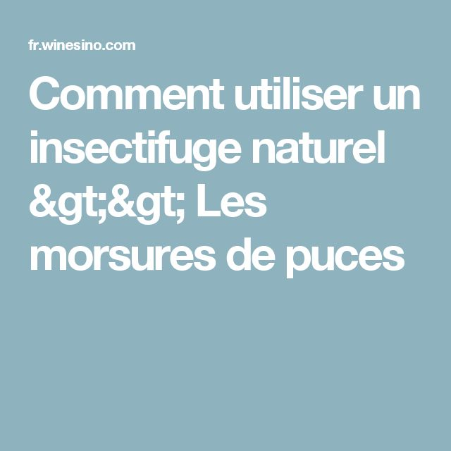 Comment utiliser un insectifuge naturel >> Les morsures de puces