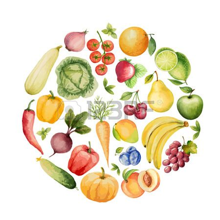 Set Of Watercolor Vegetables And Fruits.Template For Your Design... Royalty Free Cliparts, Vectors, And Stock Illustration. Image 40592884.