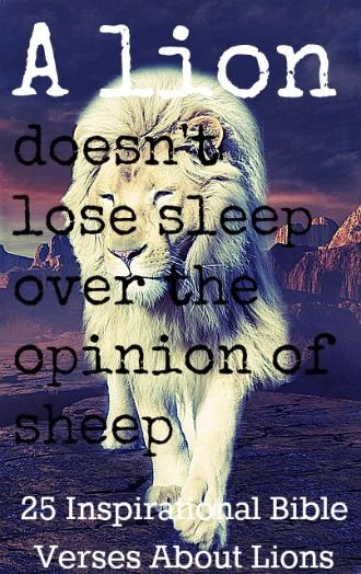 A Lion Doesn't Lose Sleep Over The Opinion Of Sheep! Check Out 25 Inspirational Bible Verses About Lions