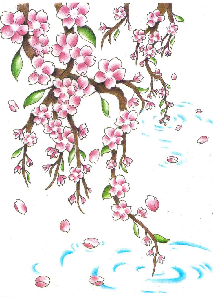 36 best Cherry blossom drawing/ tattoo idea images on ...