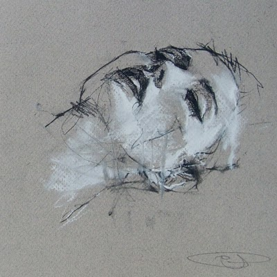 guy denning - a drawing a day: December 2010