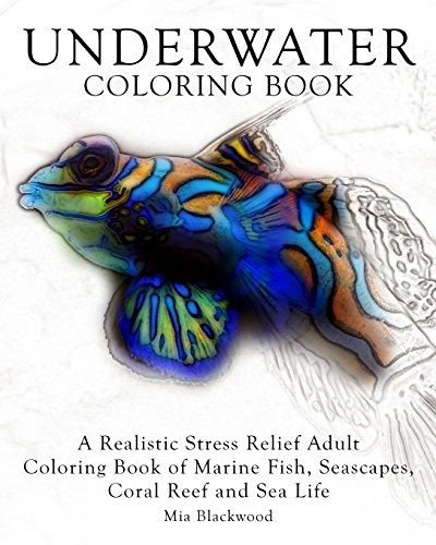 Underwater Coloring Book A Realistic