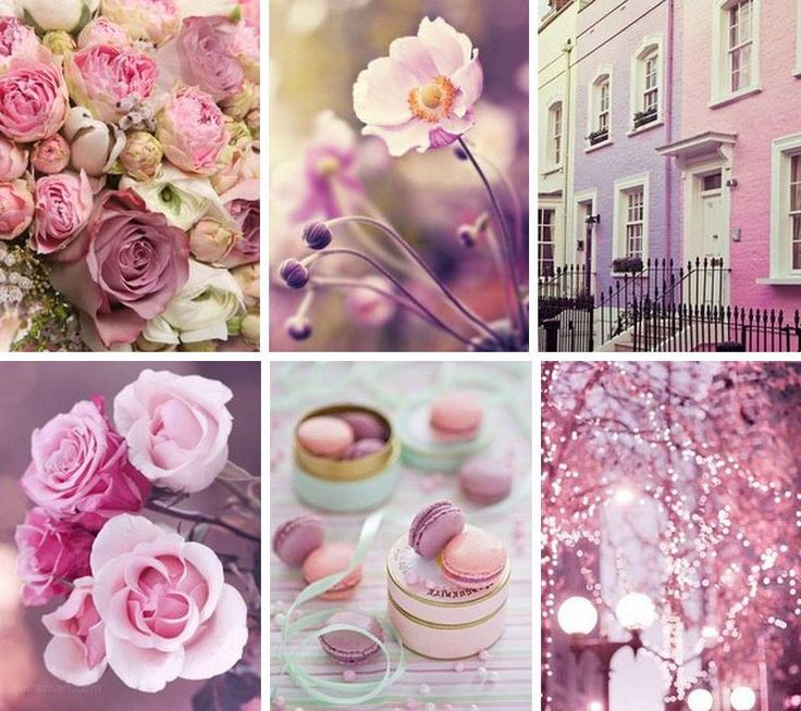 Pink Moodboard | Mood Boards -summer neon colors | Color ...