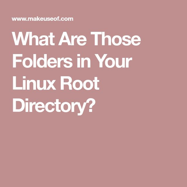 What Are Those Folders in Your Linux Root Directory?