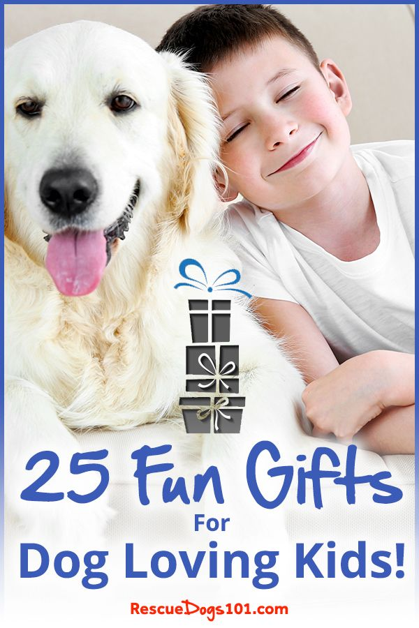 36 Unique Gifts For Dog Loving Kids Updated 2019 Dog Gifts