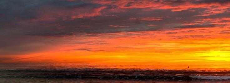 Pilgrim of the sunset | by carogray1