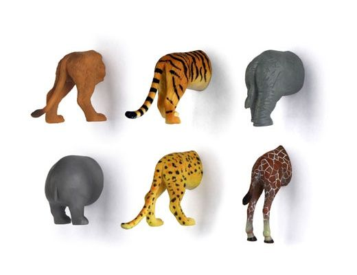 Animal Butt Magnets @ It's a Present!