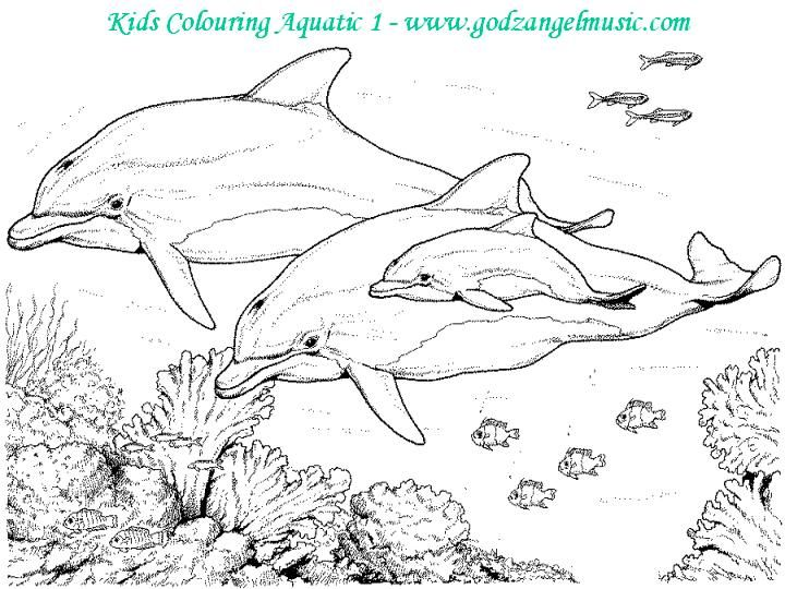free scenery coloring pages - photo#28