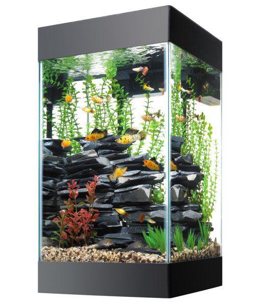 Aqueon Column Fish Tank - Super Cool Fish Tanks http://www.supercoolfishtanks.com/cool-fish-tanks/10-gallon-fish-tank/aqueon-column-fish-tank/  #supercoolfishtanks #coolfishtanks