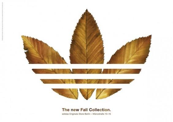 New Coleccion