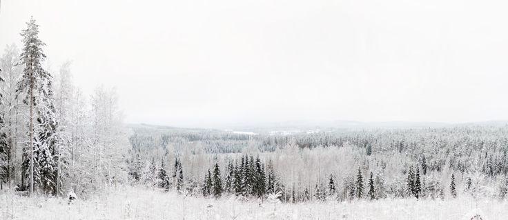 Jukojärvi 2011 #landscape ...