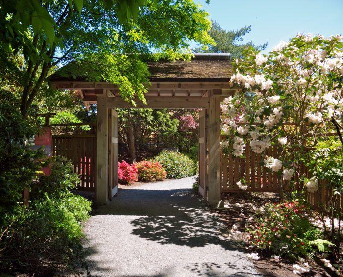 8. Bellevue Botanical Gardens