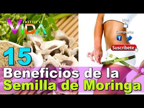 15 Beneficios de la Semilla de Moringa, sirve hasta para levantar muertos - YouTube