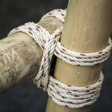 Image result for how to lash bamboo