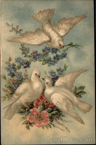 Doves and Flowers