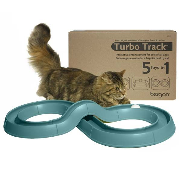 Cat Toys, Cat Beds, Discount Cat Furniture