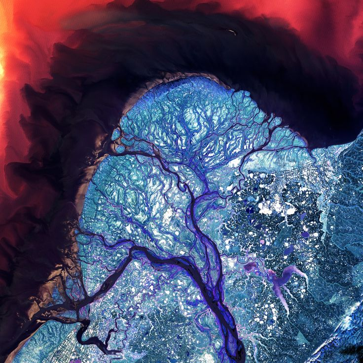 The Yukon River Delta