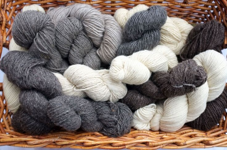 Canadian Ewe - Canadian made wool.
